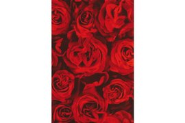 Apparaatrol Kaleidoscope 200mx50cm red roses