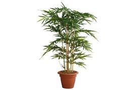 Kunstplant Bamboe met sierpot 210cm hoog